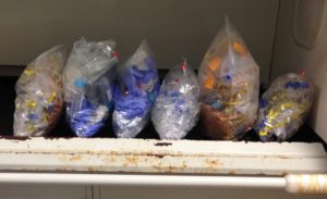 Just *half* of the waste we produced from our DNA extractions